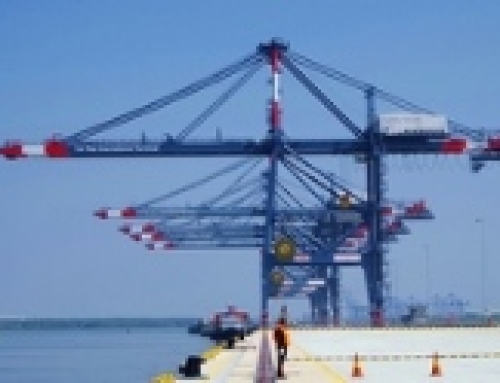 (English) Shanghai port records higher container volumes in March